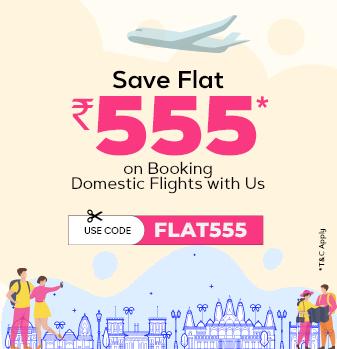domestic-flight-offer Offer