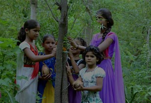 Discover the Amazing Village of Rajasthan that Plants 111 Trees Every Time a Girl Child Is Born