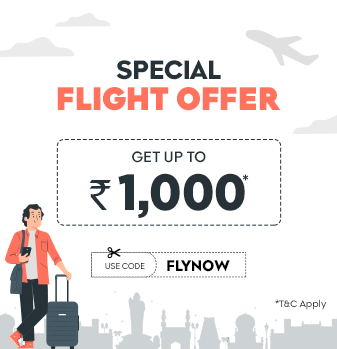 domestic-flight-sale Offer